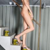 Anja Rubik naked pic