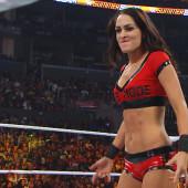 Brie Bella body