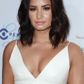 Demi Lovato ausschnitt