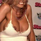Donna D'Errico nipple slip