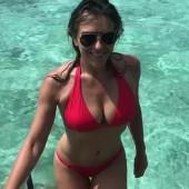 Elizabeth Hurley body