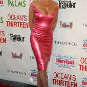 Ellen Barkin cleavage