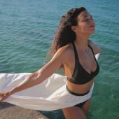 Emmanuelle Chriqui bikini
