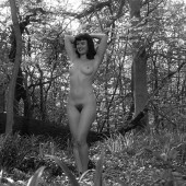Boobs Gretchen Mol Nude Video Images