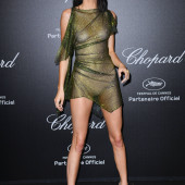 Kendall Jenner see through