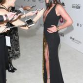 Lea Michele upskirt