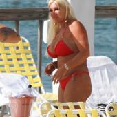 Linda Bollea nudes
