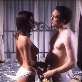 Michelle Hunziker topless