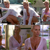 Nicollette Sheridan hot scene
