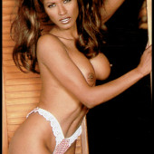 Traci Bingham nude photos