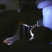 Vanessa Angel sex scene