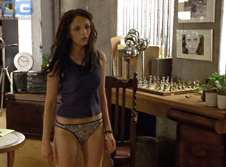 Rachael Leigh Cook Nude