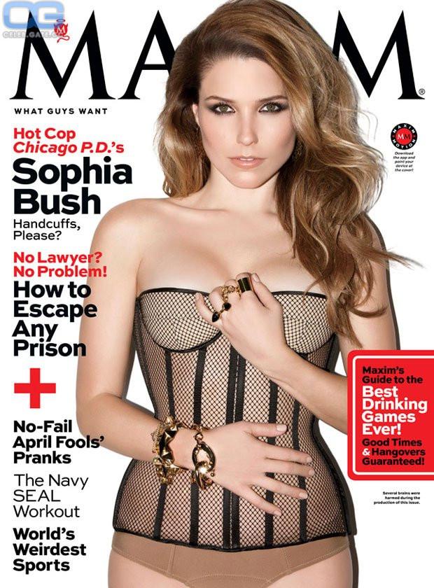 Sophia Bush  nackt