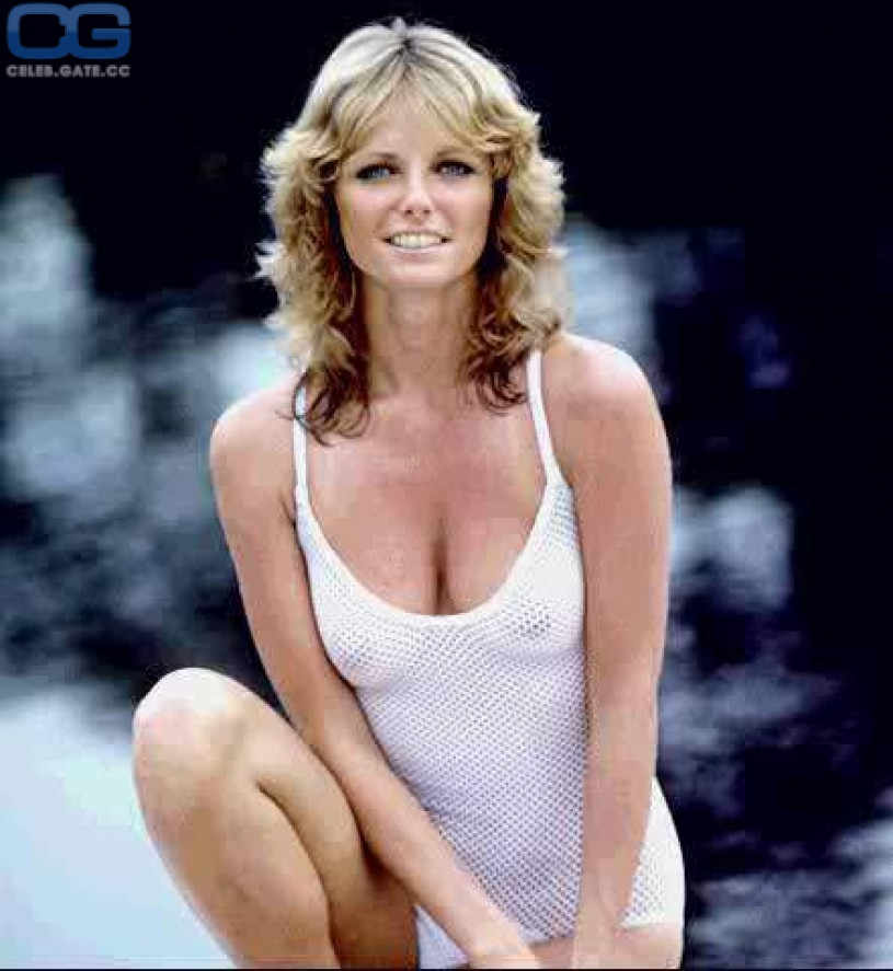Think Photos cheryl tiegs nude matchless theme