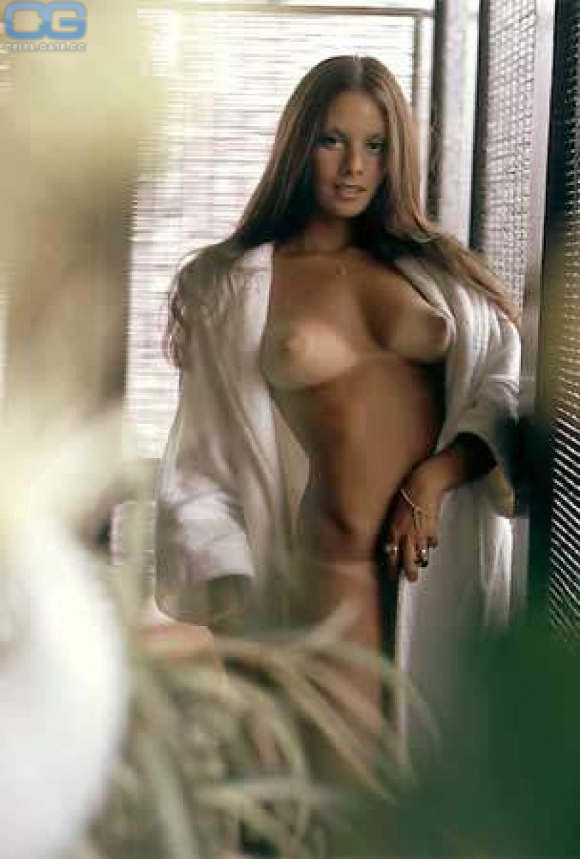 playboy Nude ellen michaels