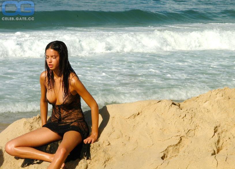 Adriana lima nude fakes