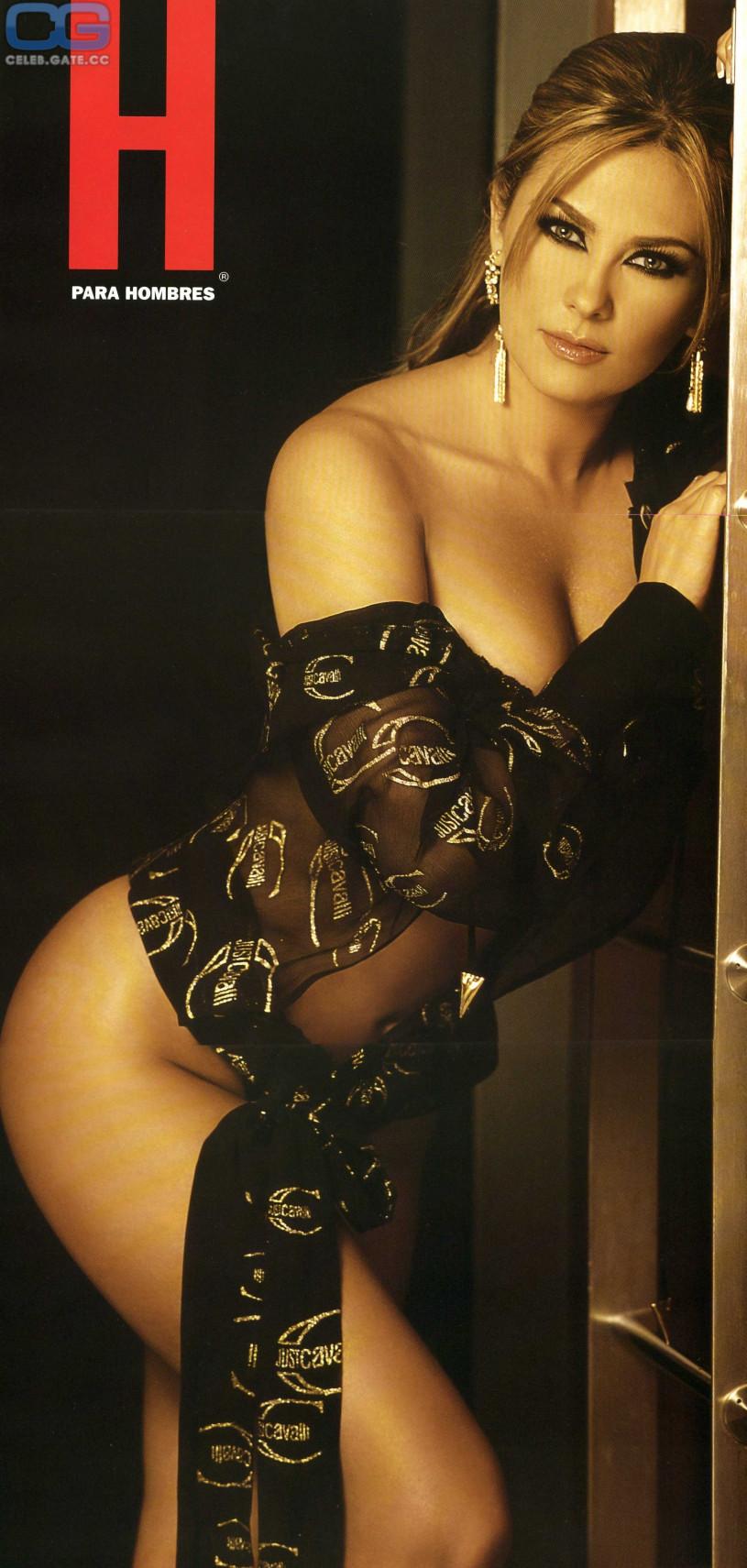 Exactly Aracely arambula nude fakes consider, that